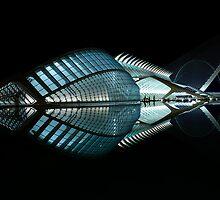 The Big Fish - CAC - Valencia by Valfoto