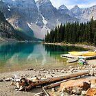 Moraine Lake Banff National Park by Teresa Zieba