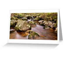 Woodland Stream at Glencree co, Wicklow. #2 Greeting Card