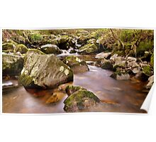 Woodland Stream at Glencree co, Wicklow. #2 Poster