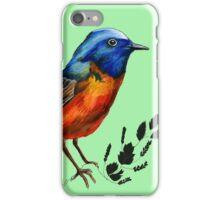 Redstart  - Bird Illustration iPhone Case/Skin