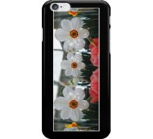 3 Daffodils iPhone Case/Skin