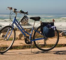 Bike at the beach by Sue Leonard