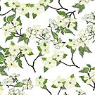 April blooms(Dogwoods) by SuburbanBirdDesigns By Kanika Mathur