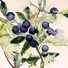 Blue Berries by AndreaFettweis