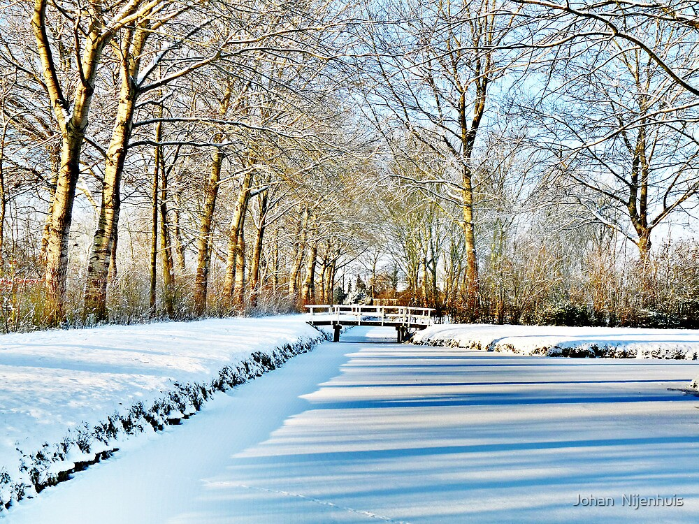 WINTER VIEW AT THE JULIANA PARK by Johan  Nijenhuis