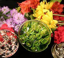 Glass Frogs by Rita Ballantyne