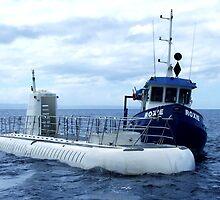 Atlantis Submarine ~Maui by Marjorie Wallace