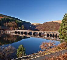 Elan valley bridge by Shaun Whiteman