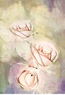 Three Pale Roses by Diane Schuster