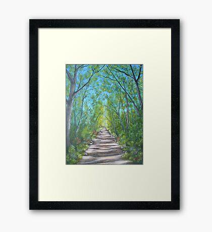 Deep inside the forest Framed Print