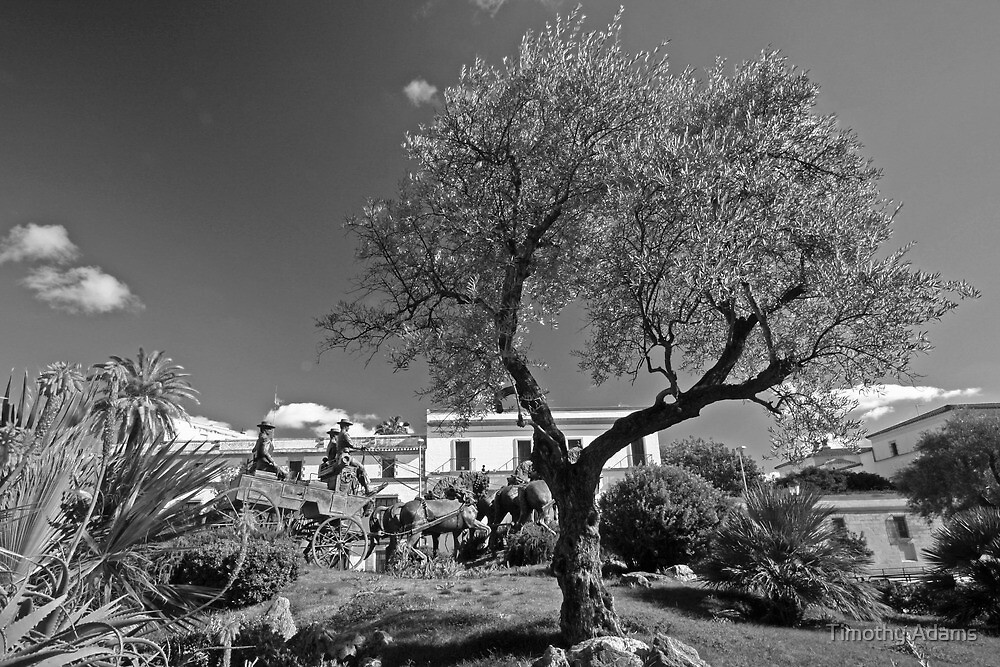 monument in jerez mono by Timothy Adams