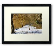 Winter Willows Framed Print