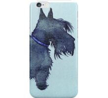 Scottie watercolour (blue) iPhone Case/Skin