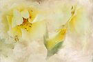 Do Yellow  Roses Say Goodby by Diane Schuster