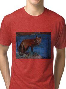 Mischievous, As In Fox Tri-blend T-Shirt