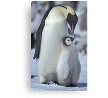 Snowhill Emperor and Chick Metal Print
