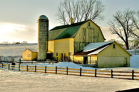 The Yellow Barn by Monte Morton