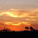 California Sunset by signaturelaurel