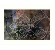 Cobwebs on the Fence Art Print