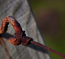 Rusty Nail by SteveJSharp
