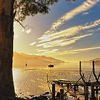 Dawn, Lyttelton Harbour by Phoxford
