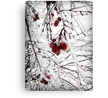 Frost II Canvas Print