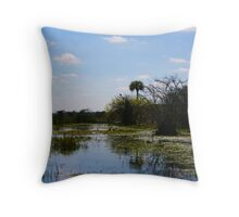 halcyon waters Throw Pillow