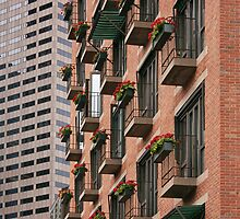Living And Working In Boston by CarolM
