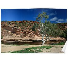 Murchison River Poster