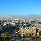 Parisian Skyline by LeedenMoon