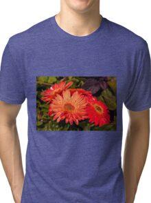 June Garden 2 Tri-blend T-Shirt