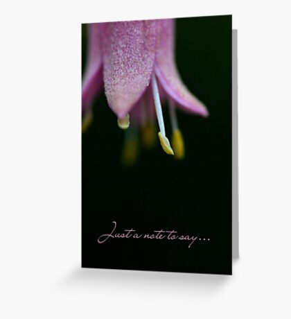 Just a note to say..... Greeting Card