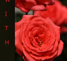 With Love - red & black Rose by Joy Watson