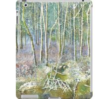 winter forest iPad Case/Skin
