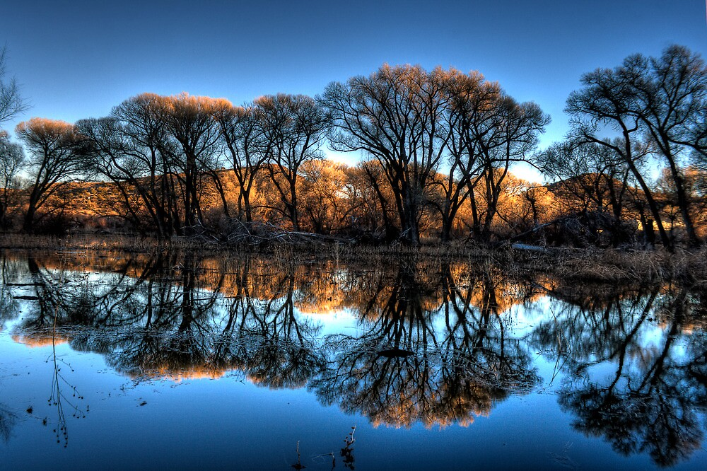 Willow Creek Cove Redux by Bob Larson