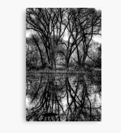 Tree Lines in Black and White Canvas Print