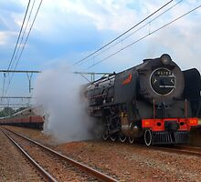 Magaliesberg Steam Train by JandeBeer