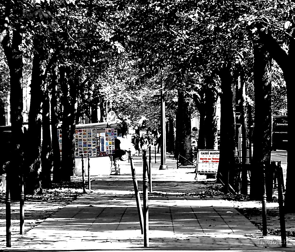 Champs-Élysées by TheRoacH