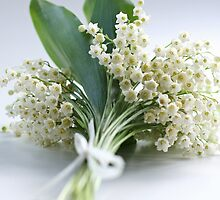 bouquet of lilies of the valley by OldaSimek