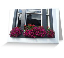 pink box  - Town House window Greeting Card
