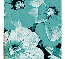 Turquoise screen floral by ellesmerecollec