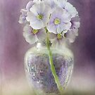 A touch of Spring by Mandy Disher