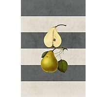 botanical stripes - pear Photographic Print
