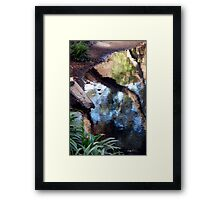 Watercolors Framed Print