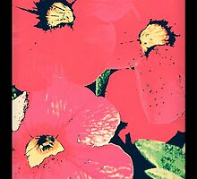 Retro screen floral  by ellesmerecollec
