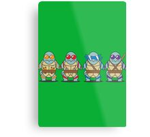 Teenage Mutant Squirtle Squad Metal Print