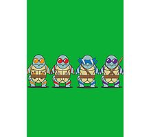 Teenage Mutant Squirtle Squad Photographic Print