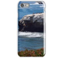Natural Bridges State Beach iPhone Case/Skin