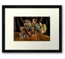 Gardening on a Wet Weekend Framed Print